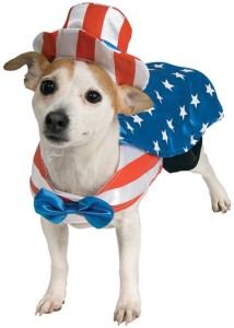 fourth-july-pet