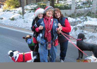 Christmas Parade 2013 (3)