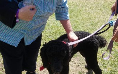1000 Pines Camp – women's retreat. The therapy dogs are a hit
