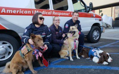 Pups of the VA (missing Sadie Ann today).