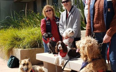 Today at Crafton College – health and club fair. Fun day with the dogs.